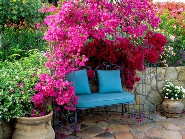 ... Charming Pink Patio Design; Outdoor Furniture ...