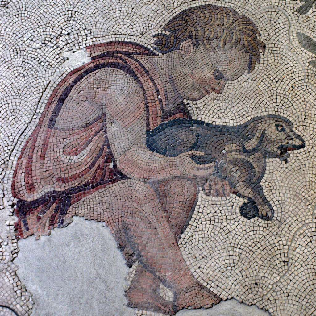 Roman Mosaic Discoveries Made Through Time Mozaico Blog