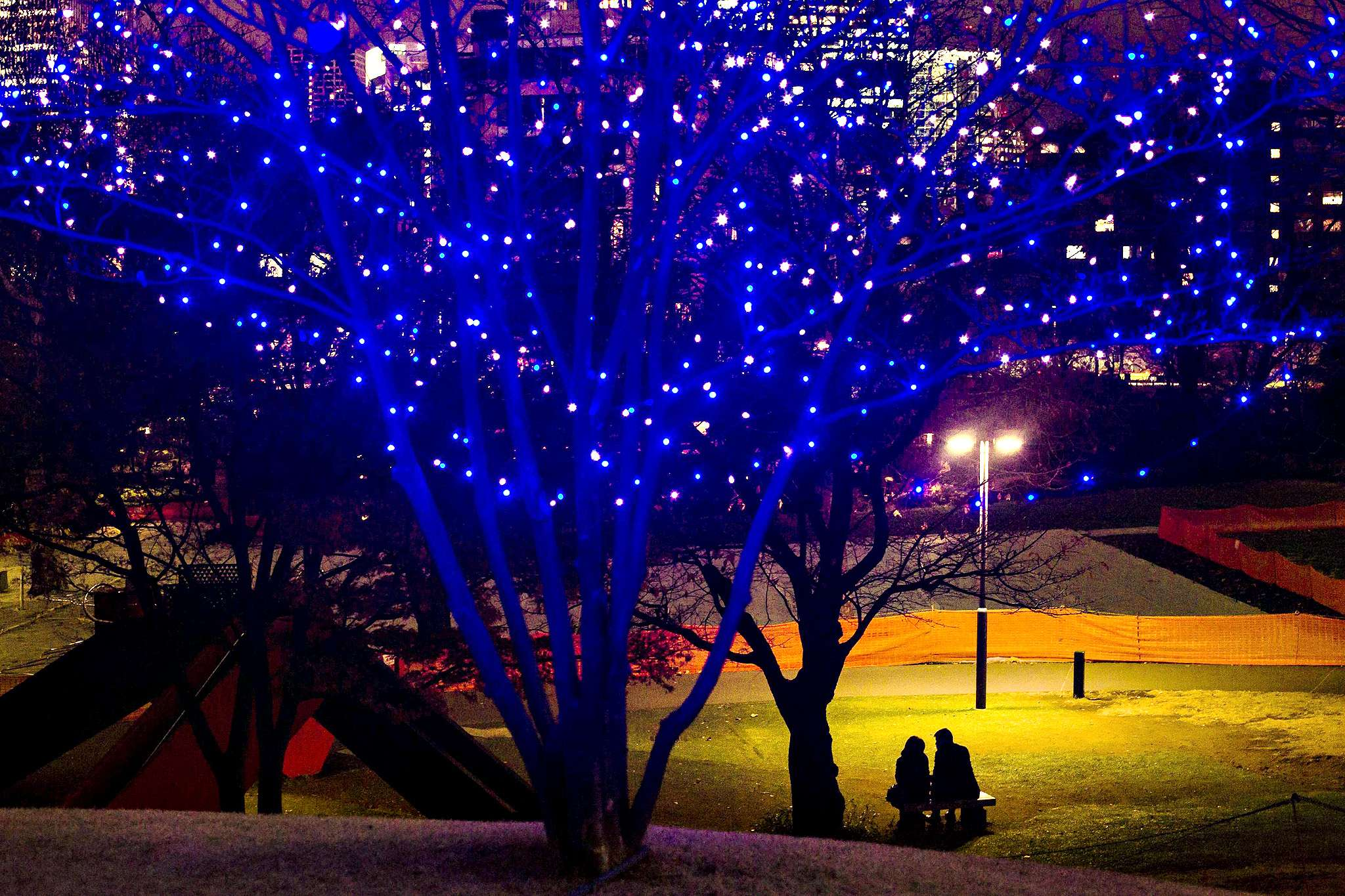 Couple sits under a street lamp in a park near Christmas lights