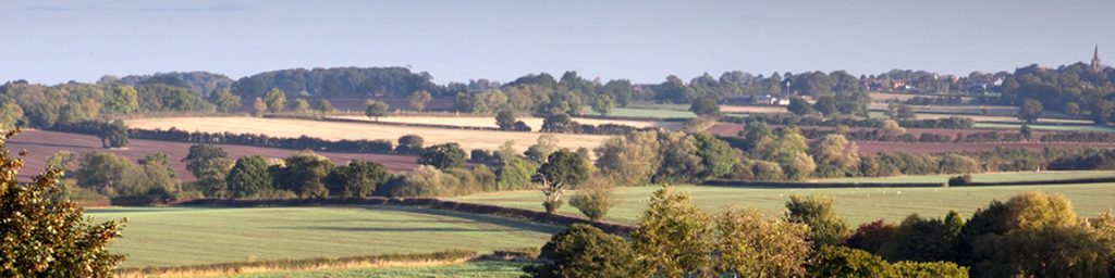 Bosworth Battlefield from Bosworth Battlefield Heritage Center and Country Park