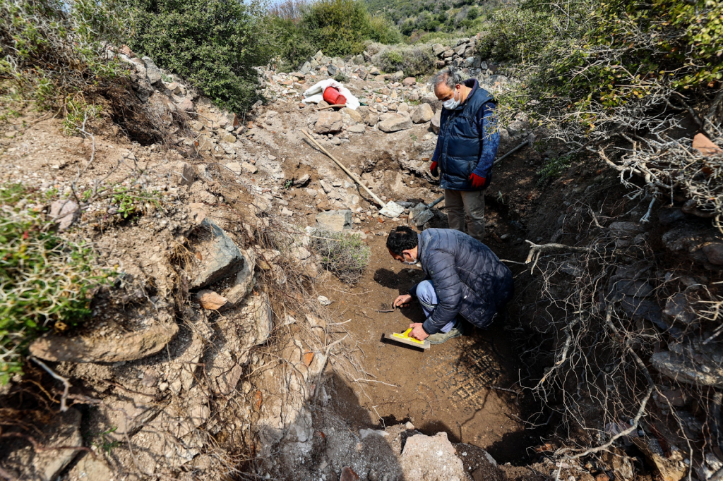 Mosaic Discovery in Turkey Source: Daily Sabah