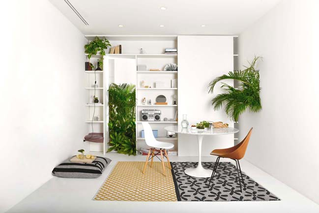 Modern Apartment Design with Plants